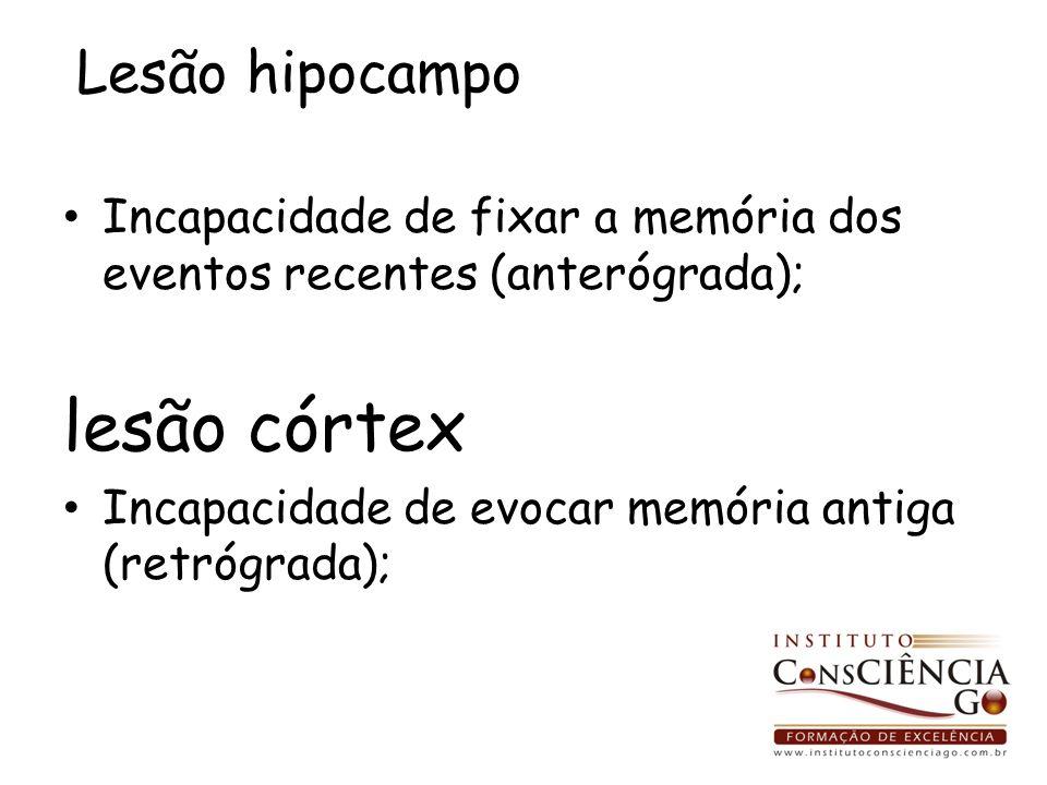 lesão córtex Lesão hipocampo