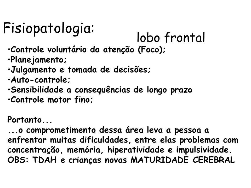 Fisiopatologia: Controle voluntário da atenção (Foco); Planejamento;