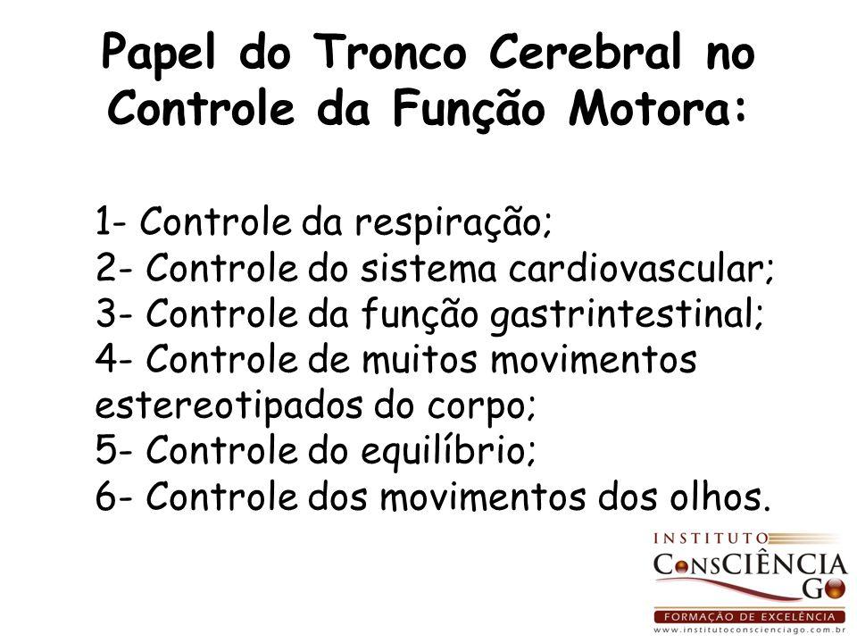 Papel do Tronco Cerebral no Controle da Função Motora: