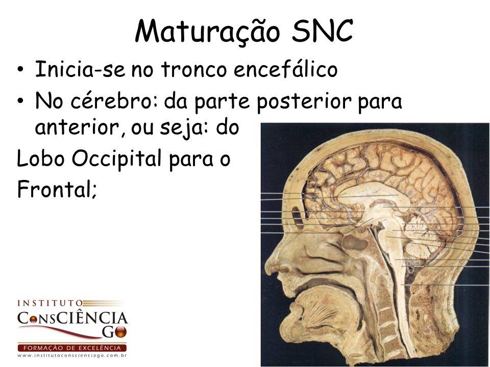 Maturação SNC Inicia-se no tronco encefálico