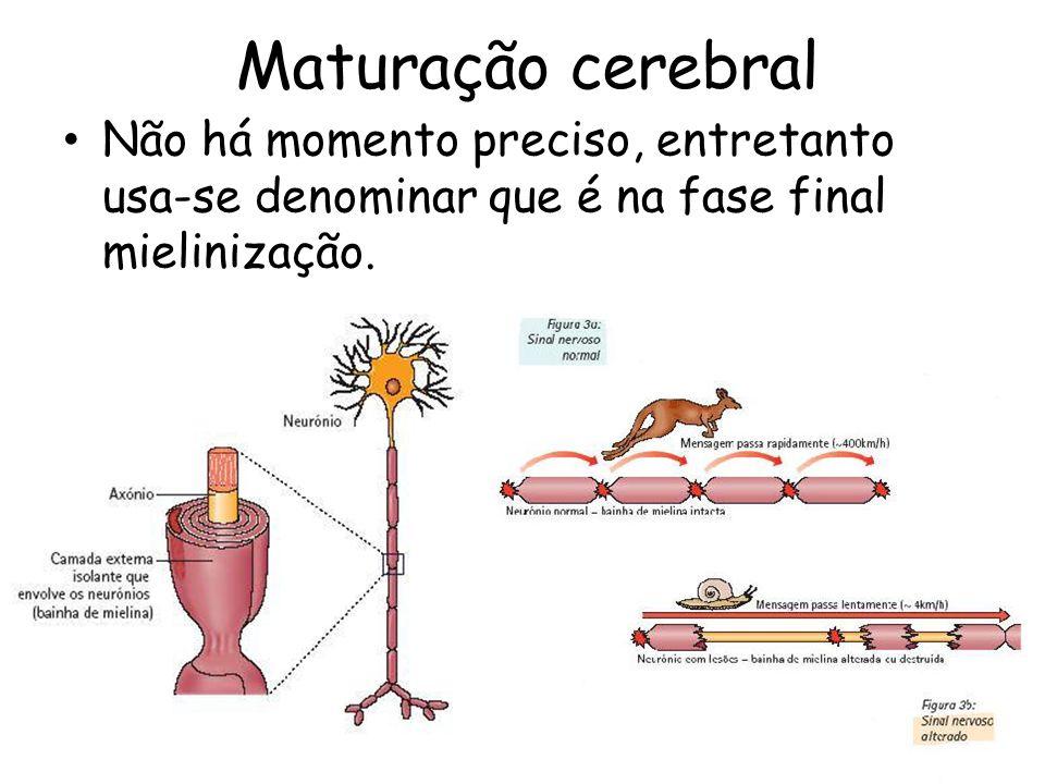 Maturação cerebral Não há momento preciso, entretanto usa-se denominar que é na fase final mielinização.