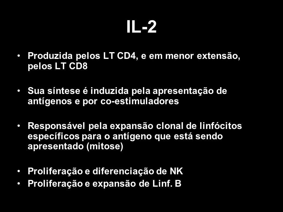 IL-2 Produzida pelos LT CD4, e em menor extensão, pelos LT CD8