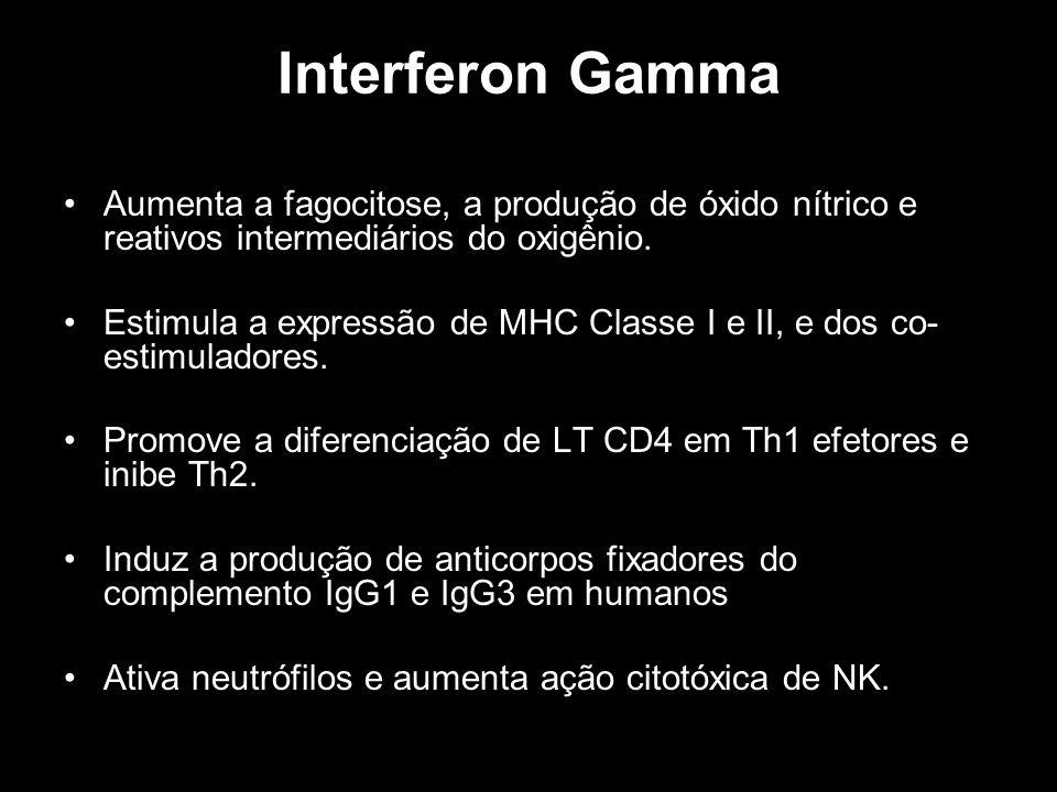 Interferon Gamma Aumenta a fagocitose, a produção de óxido nítrico e reativos intermediários do oxigênio.