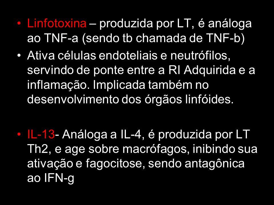 Linfotoxina – produzida por LT, é análoga ao TNF-a (sendo tb chamada de TNF-b)
