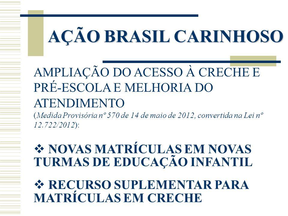 AÇÃO BRASIL CARINHOSO AMPLIAÇÃO DO ACESSO À CRECHE E PRÉ-ESCOLA E MELHORIA DO ATENDIMENTO.