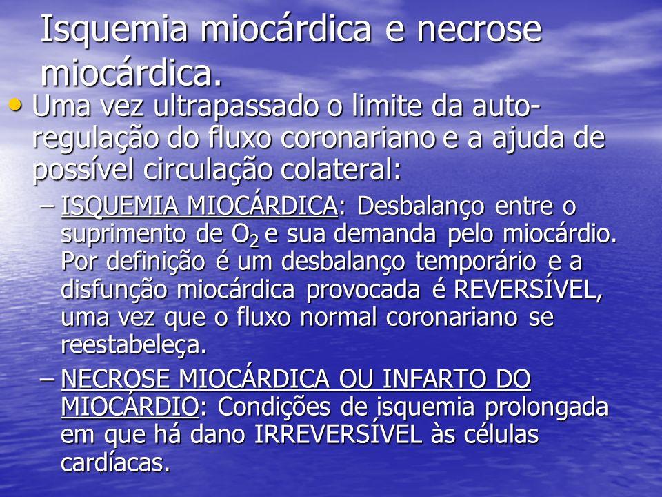 Isquemia miocárdica e necrose miocárdica.