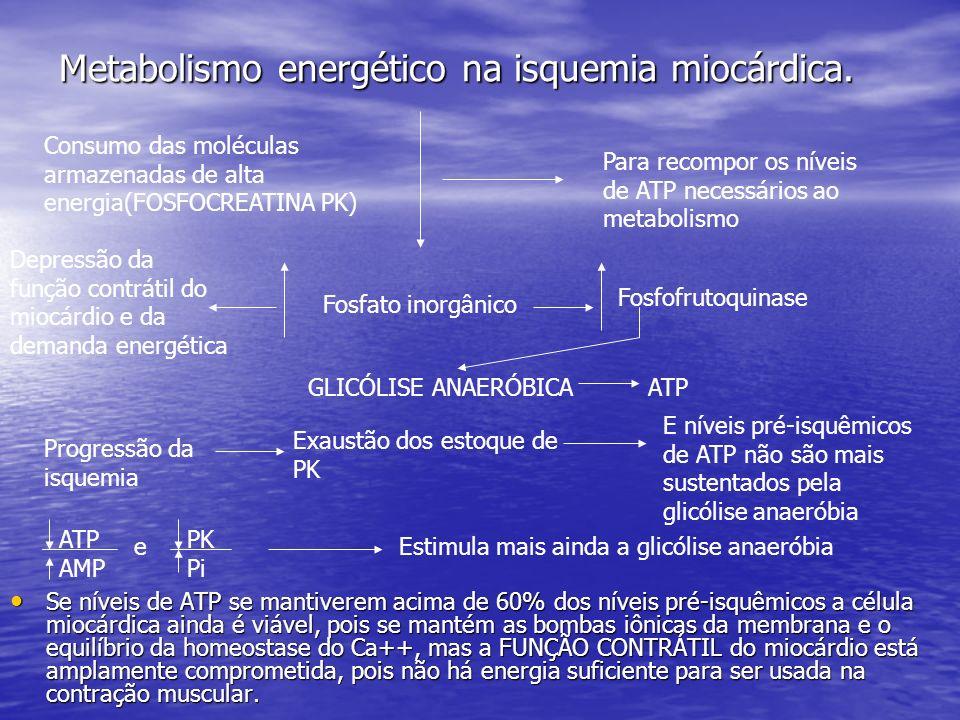 Metabolismo energético na isquemia miocárdica.