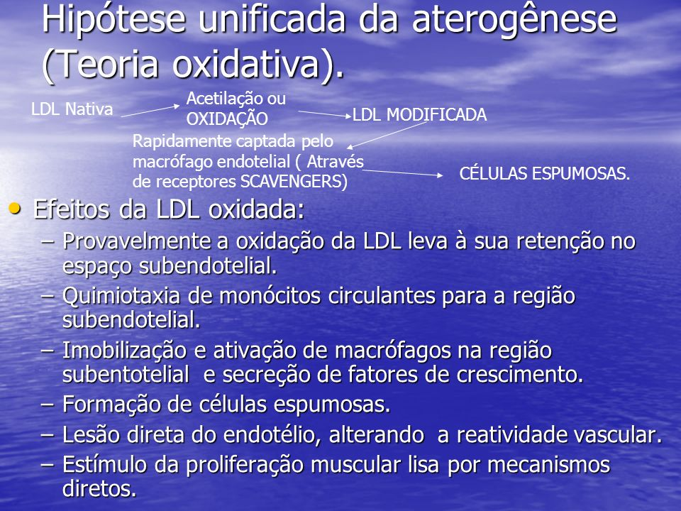 Hipótese unificada da aterogênese (Teoria oxidativa).