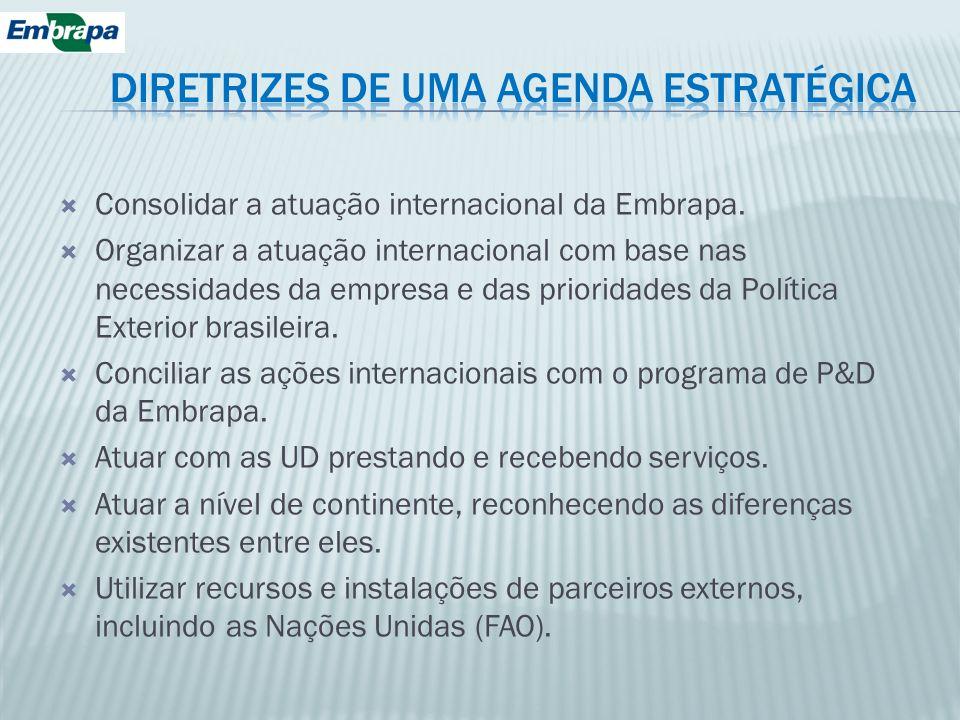 DIRETRIZES DE UMA AGENDA ESTRATÉGICA
