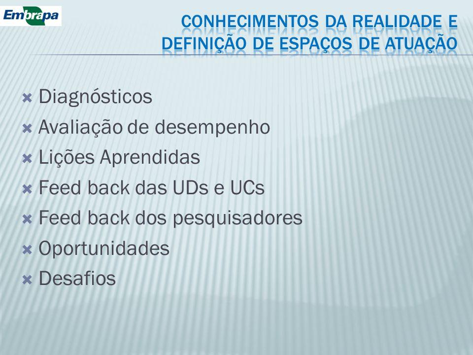 CONHECIMENTOS DA REALIDADE E DEFINIÇÃO DE ESPAÇOS DE ATUAÇÃO