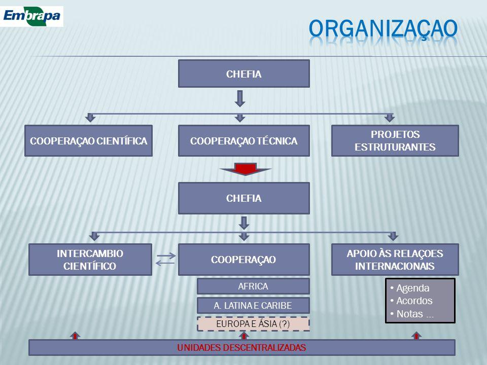 ORGANIZAÇAO CHEFIA COOPERAÇAO CIENTÍFICA COOPERAÇAO TÉCNICA