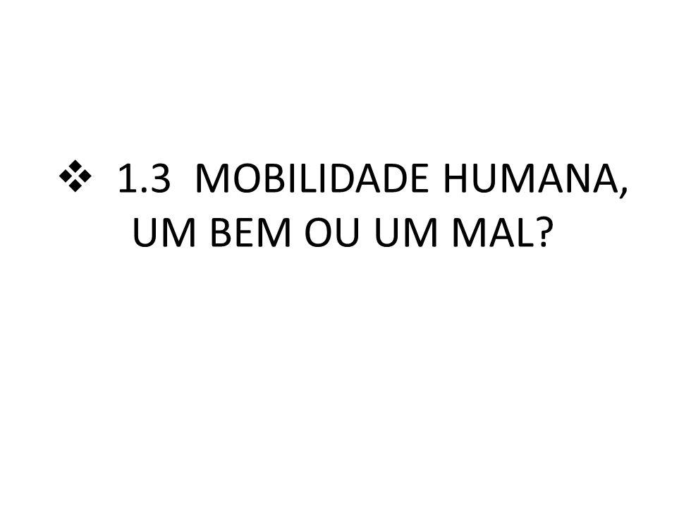 1.3 MOBILIDADE HUMANA, UM BEM OU UM MAL
