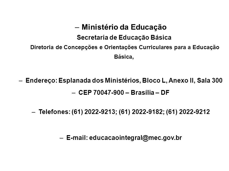 Ministério da Educação Secretaria de Educação Básica Diretoria de Concepções e Orientações Curriculares para a Educação Básica,