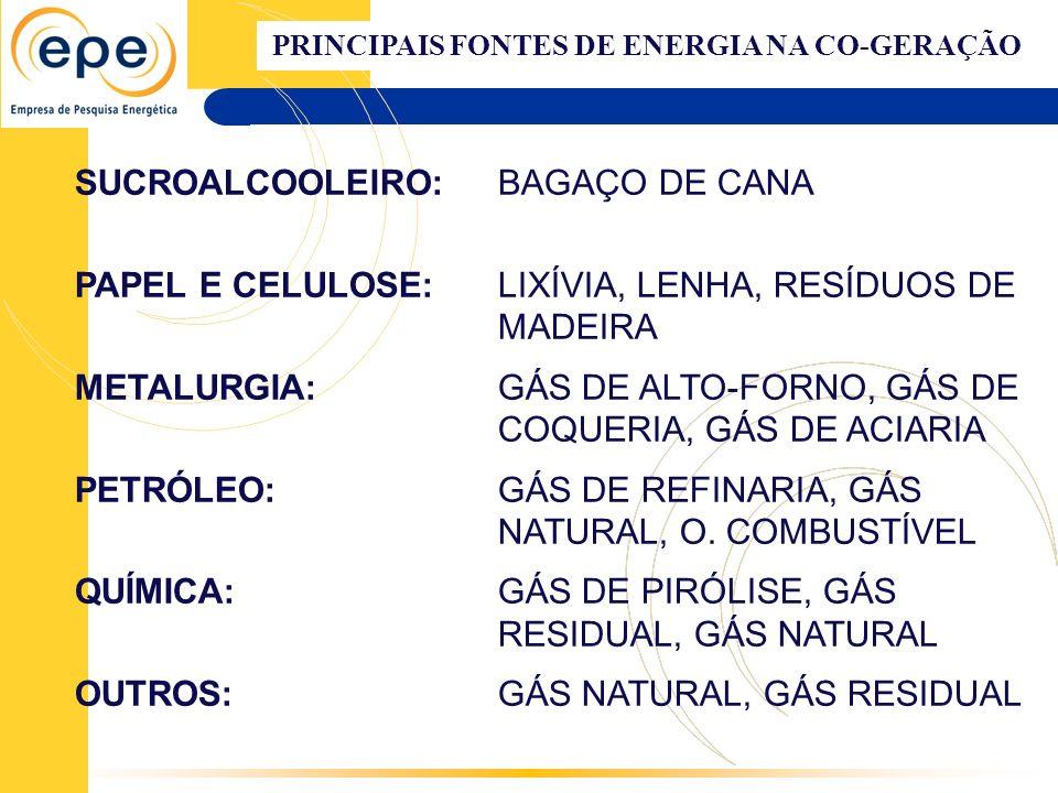 PRINCIPAIS FONTES DE ENERGIA NA CO-GERAÇÃO