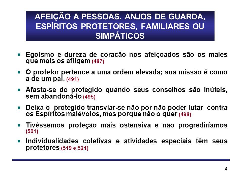 AFEIÇÃO A PESSOAS. ANJOS DE GUARDA, ESPÍRITOS PROTETORES, FAMILIARES OU SIMPÁTICOS