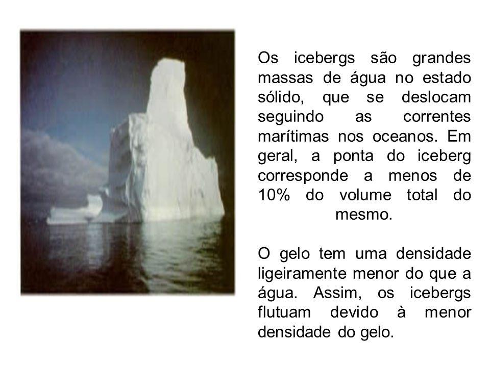 Os icebergs são grandes massas de água no estado sólido, que se deslocam seguindo as correntes marítimas nos oceanos.