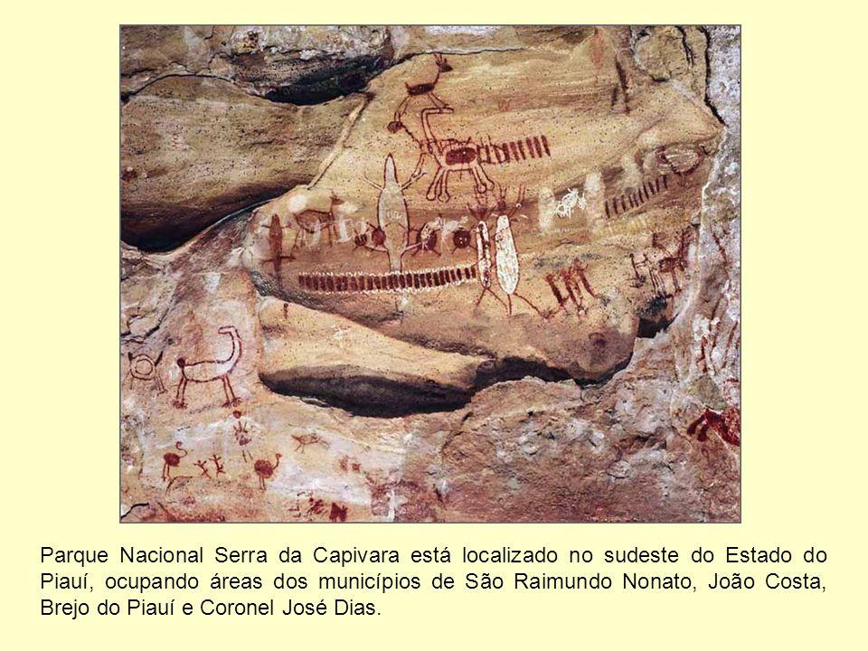 Parque Nacional Serra da Capivara está localizado no sudeste do Estado do Piauí, ocupando áreas dos municípios de São Raimundo Nonato, João Costa, Brejo do Piauí e Coronel José Dias.