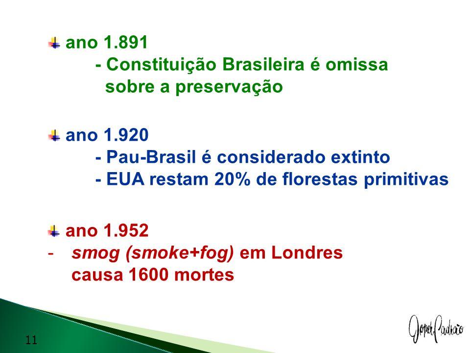 ano 1.891 - Constituição Brasileira é omissa sobre a preservação