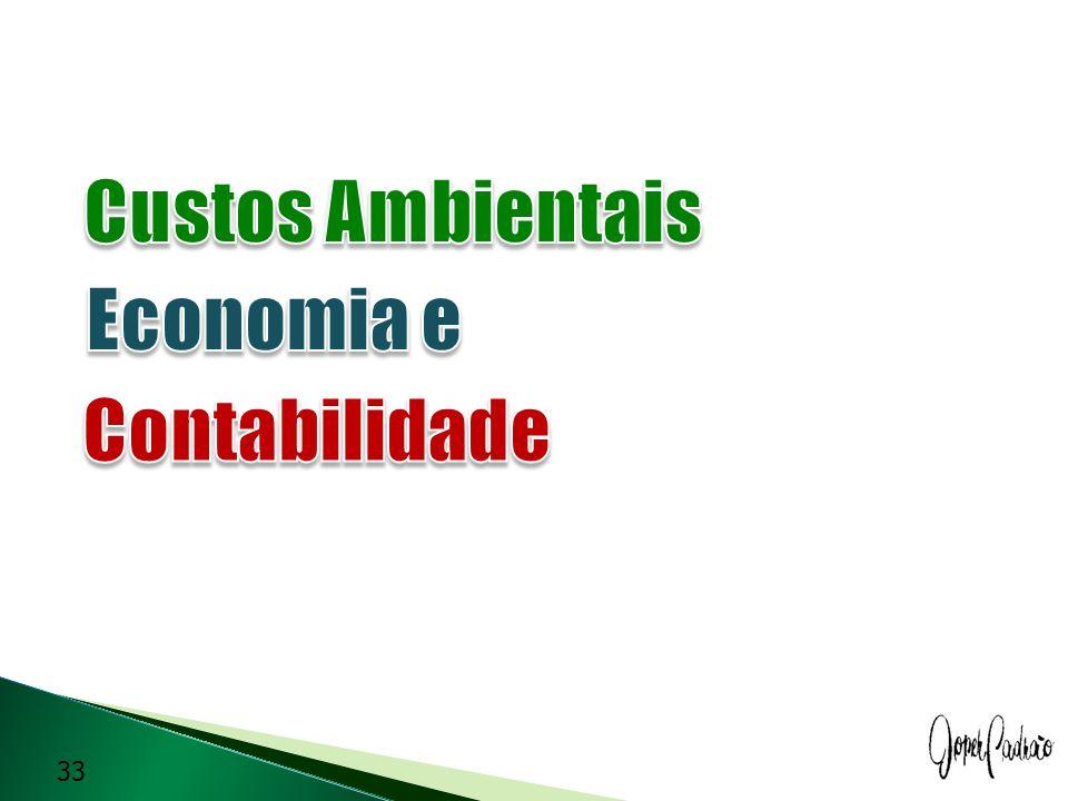 Custos Ambientais Economia e Contabilidade