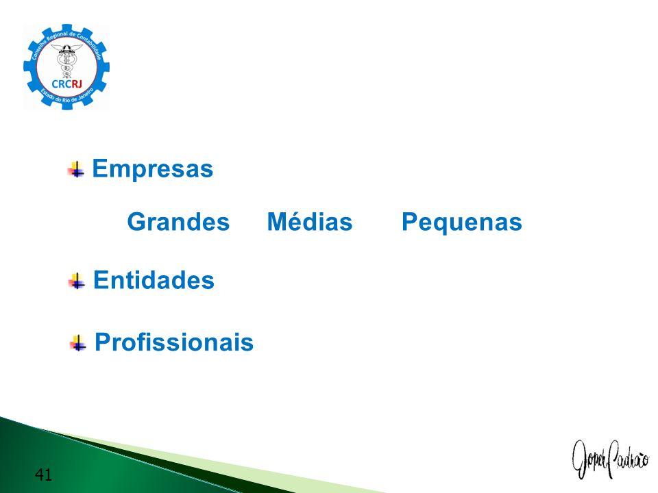 Empresas Grandes Médias Pequenas Entidades Profissionais