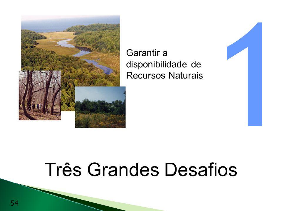 1 Garantir a disponibilidade de Recursos Naturais.