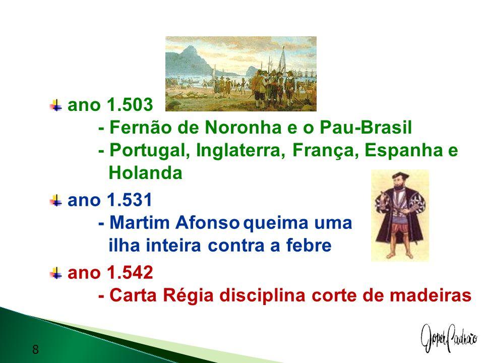 ano 1. 503. - Fernão de Noronha e o Pau-Brasil