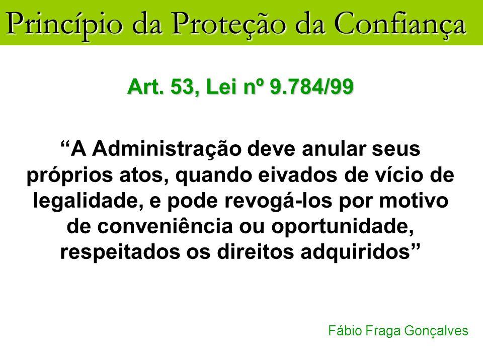 Art. 53, Lei nº 9.784/99