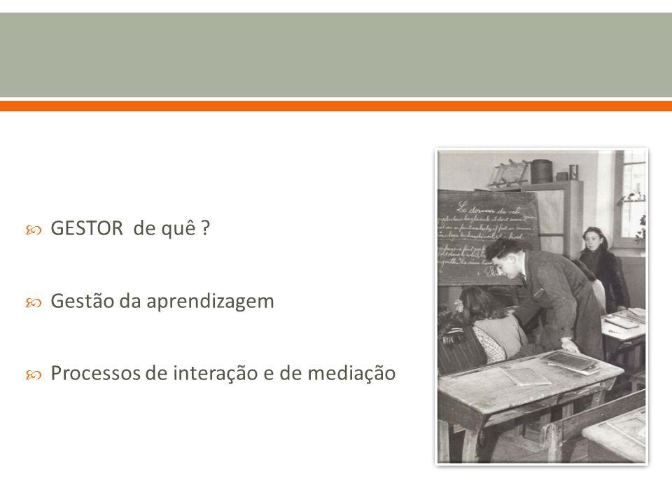 GESTOR de quê Gestão da aprendizagem Processos de interação e de mediação