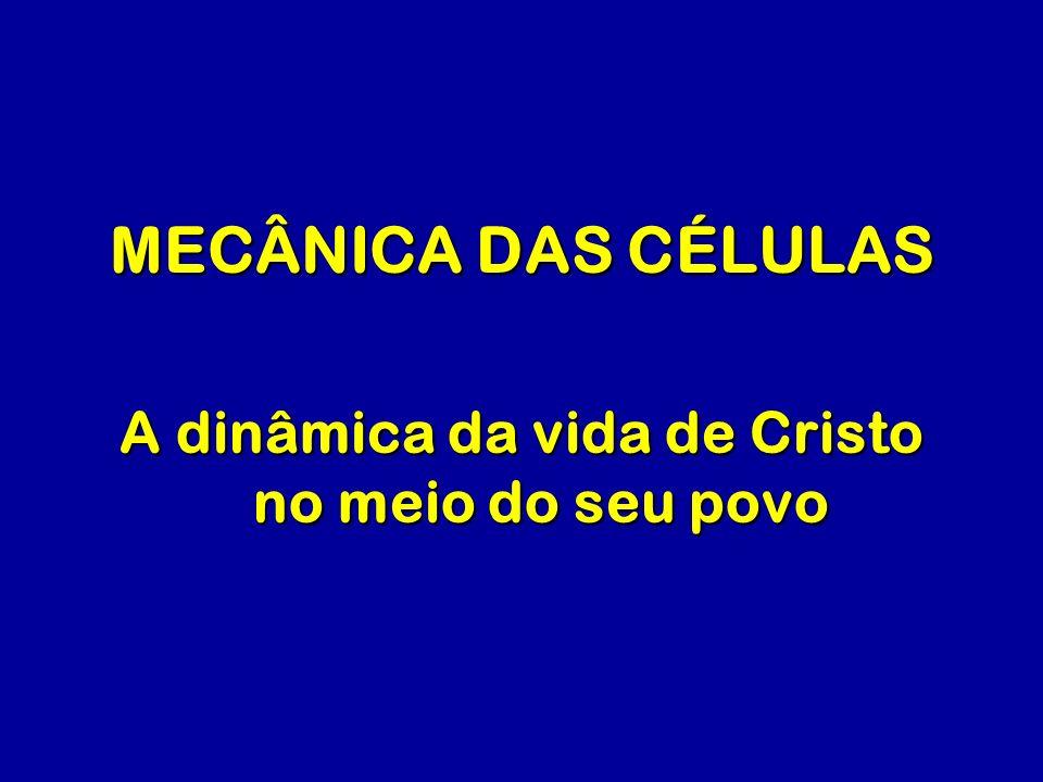 A dinâmica da vida de Cristo no meio do seu povo