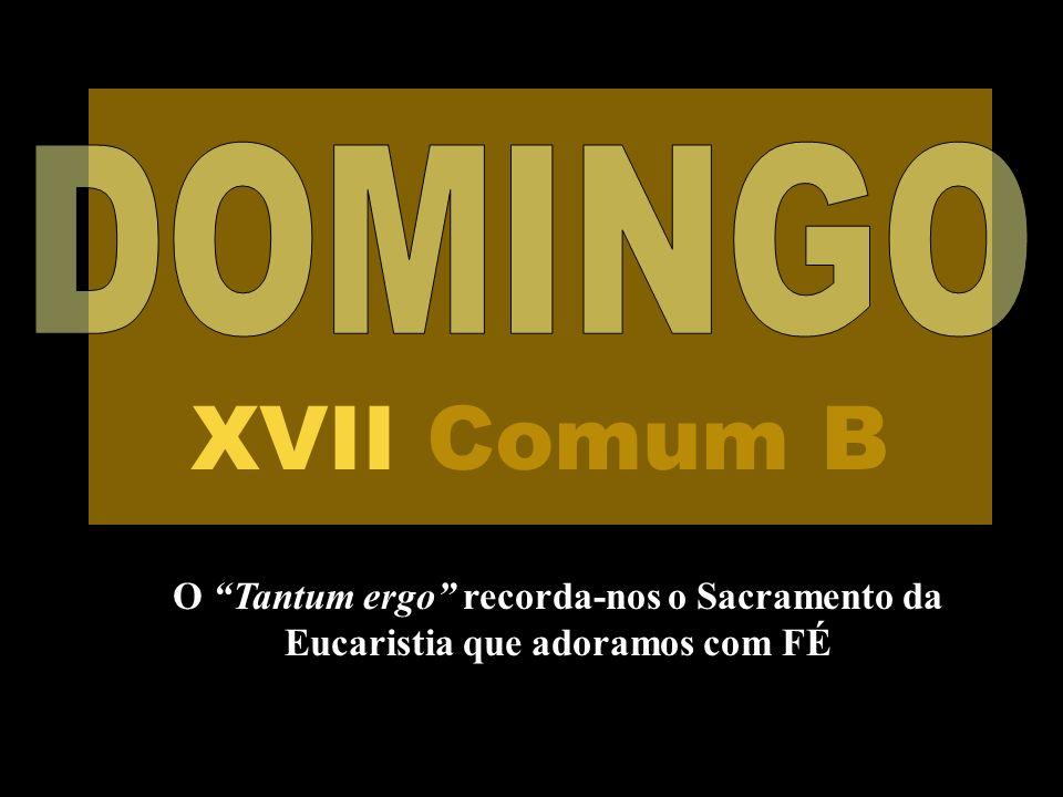 DOMINGO XVII Comum B O Tantum ergo recorda-nos o Sacramento da Eucaristia que adoramos com FÉ