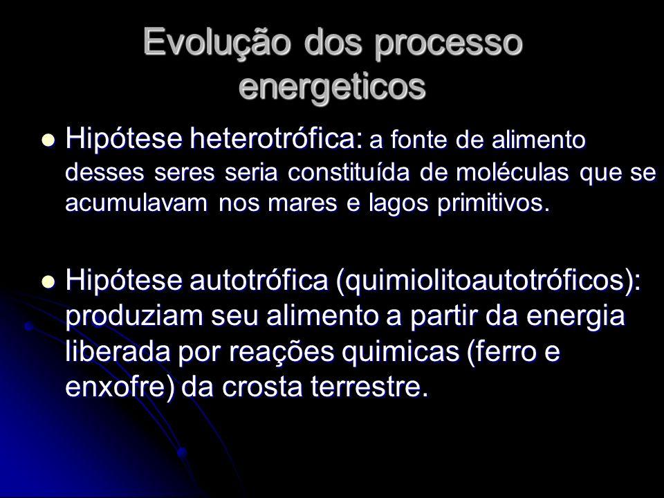 Evolução dos processo energeticos