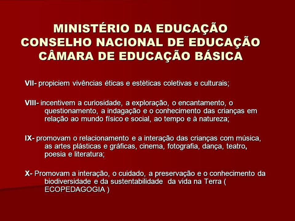 MINISTÉRIO DA EDUCAÇÃO CONSELHO NACIONAL DE EDUCAÇÃO CÂMARA DE EDUCAÇÃO BÁSICA