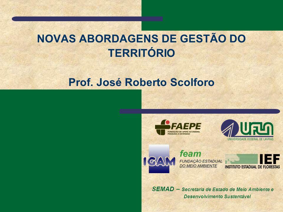 NOVAS ABORDAGENS DE GESTÃO DO TERRITÓRIO Prof. José Roberto Scolforo