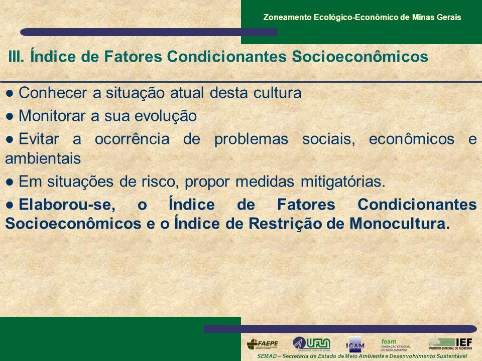 III. Índice de Fatores Condicionantes Socioeconômicos
