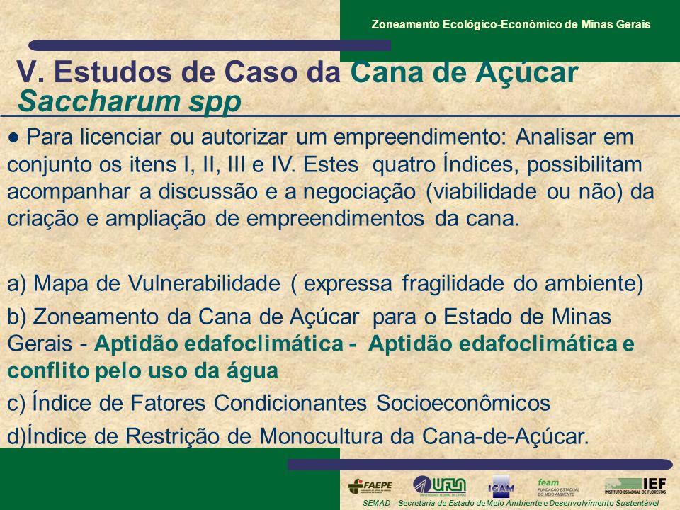 V. Estudos de Caso da Cana de Açúcar Saccharum spp