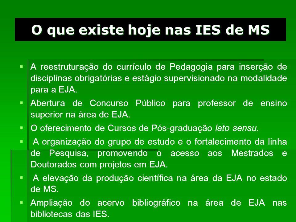 O que existe hoje nas IES de MS