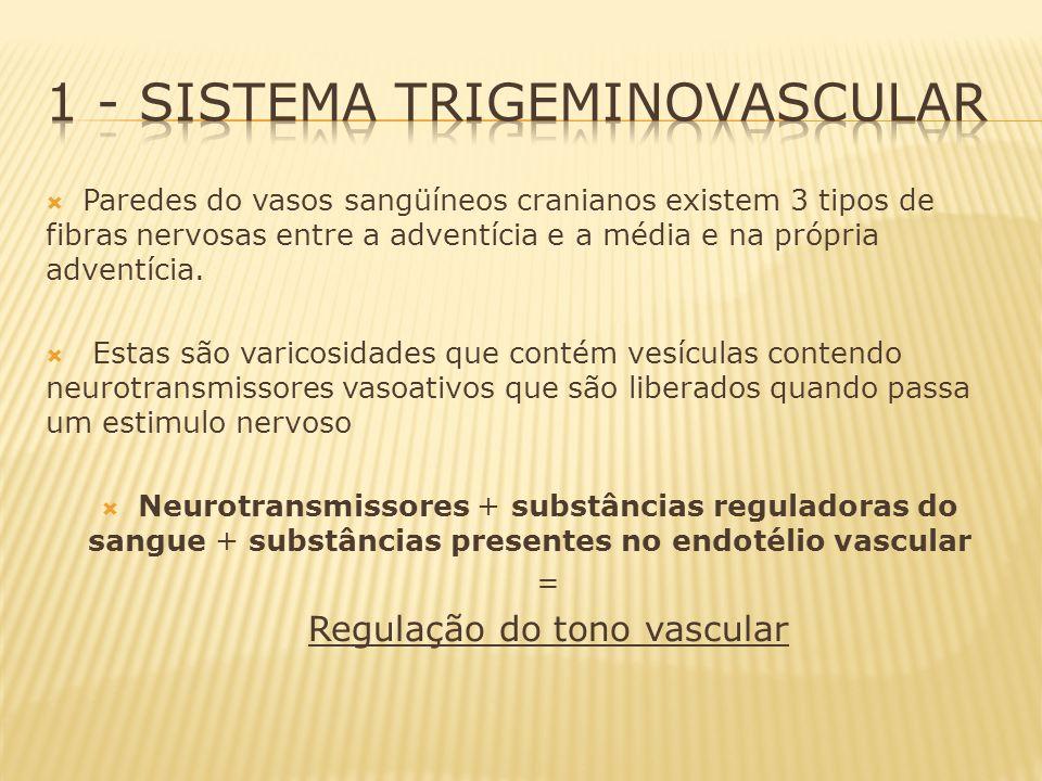1 - Sistema Trigeminovascular