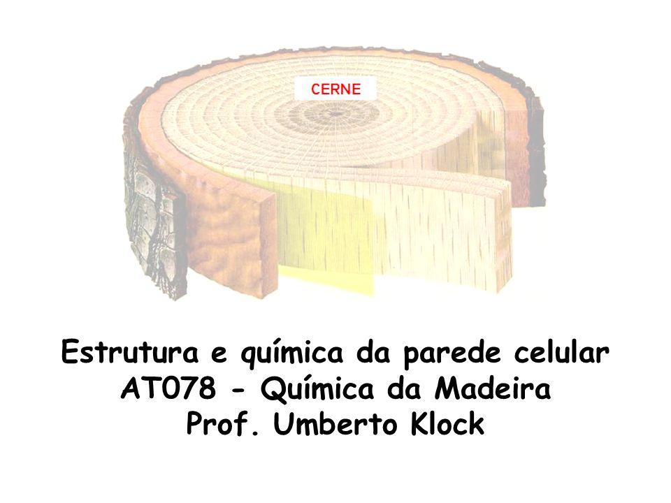 Estrutura e química da parede celular