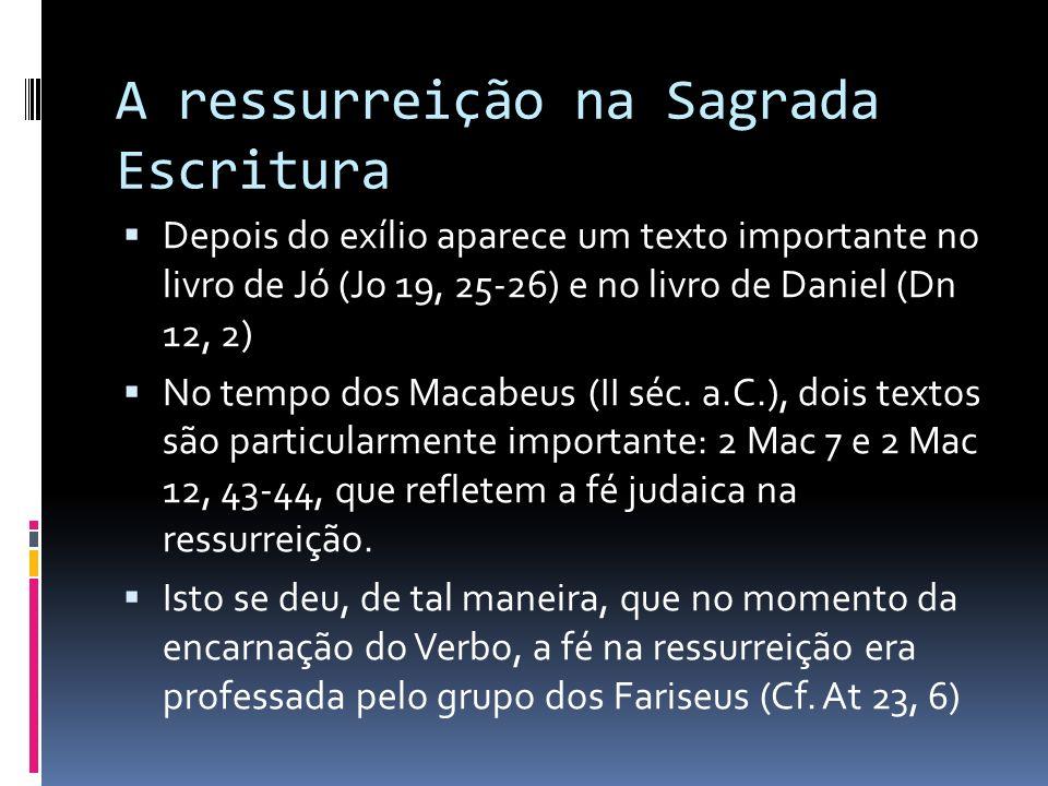 A ressurreição na Sagrada Escritura