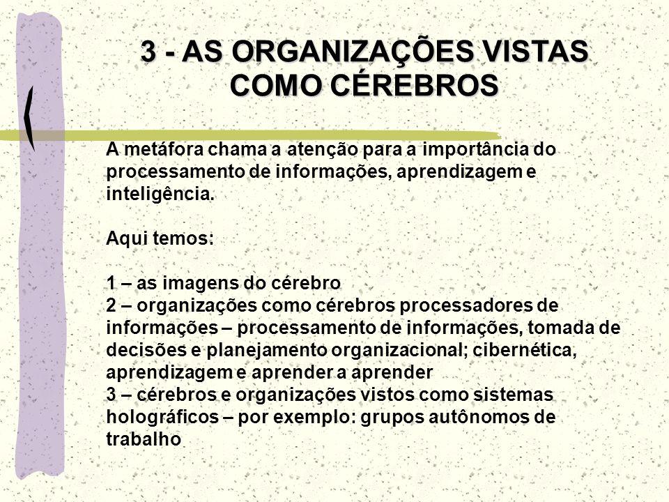 3 - AS ORGANIZAÇÕES VISTAS COMO CÉREBROS