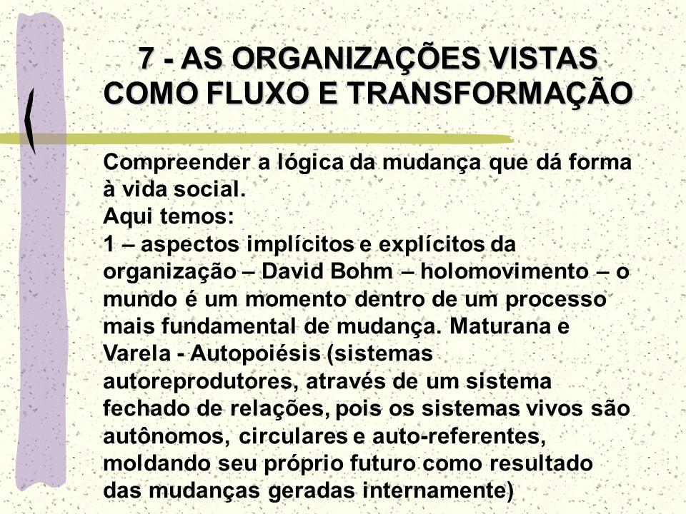 7 - AS ORGANIZAÇÕES VISTAS COMO FLUXO E TRANSFORMAÇÃO