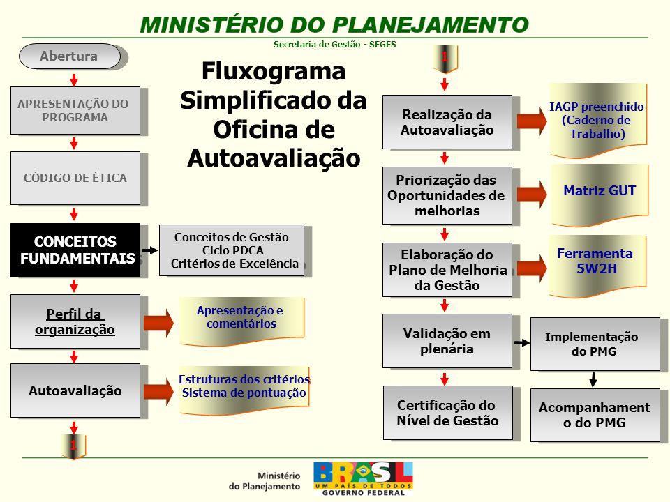 Fluxograma Simplificado da Oficina de Autoavaliação