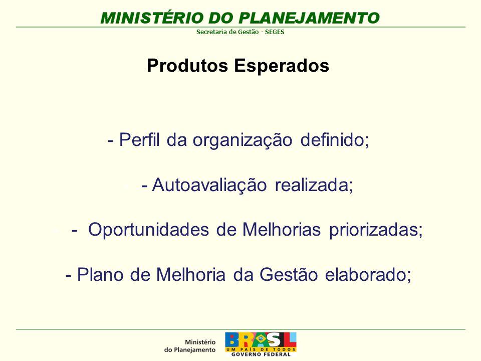 - Perfil da organização definido; - Autoavaliação realizada;