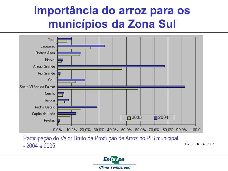 Importância do arroz para os municípios da Zona Sul