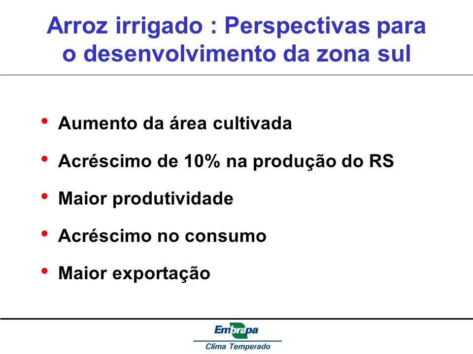 Arroz irrigado : Perspectivas para o desenvolvimento da zona sul