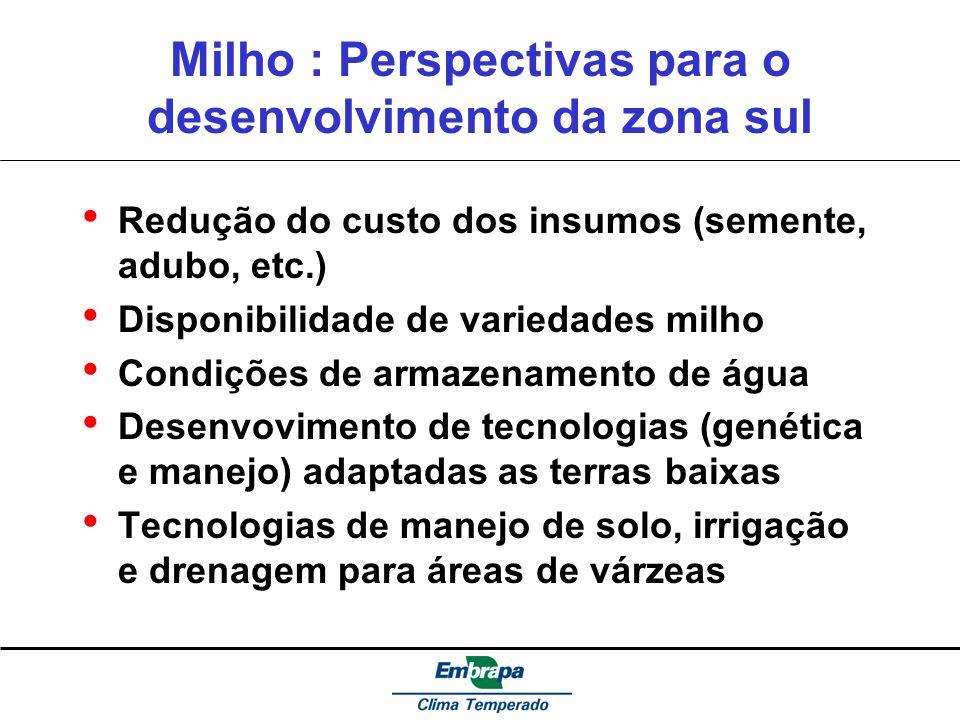 Milho : Perspectivas para o desenvolvimento da zona sul