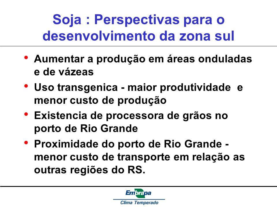 Soja : Perspectivas para o desenvolvimento da zona sul