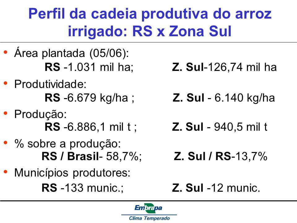 Perfil da cadeia produtiva do arroz irrigado: RS x Zona Sul