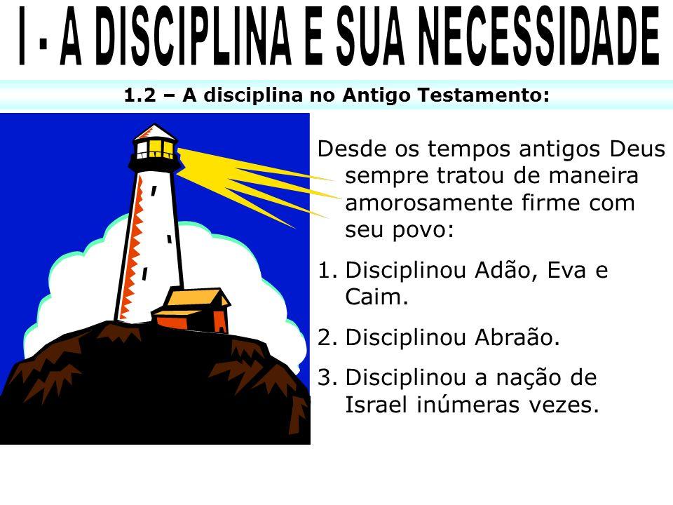 I - A DISCIPLINA E SUA NECESSIDADE