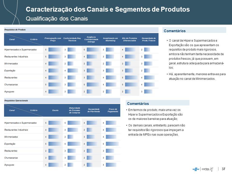 Caracterização dos Canais e Segmentos de Produtos